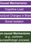 An illustrative model of proposed causal and non-causal mechanisms  underlying the association between ARHL and dementia.