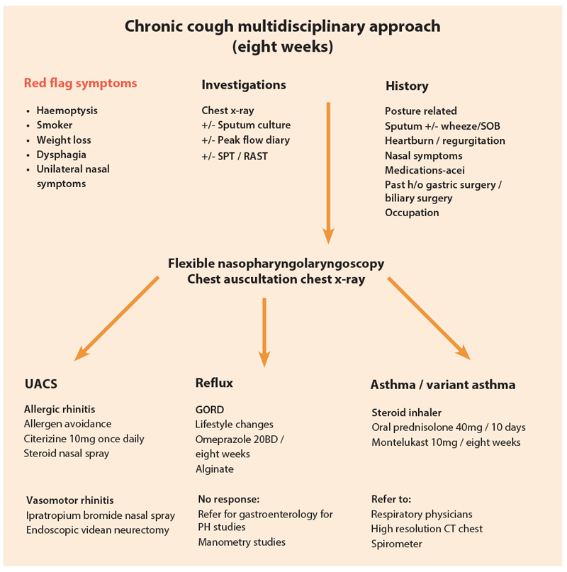 Chronic cough hypersensitivity syndrome | ENT & Audiology News